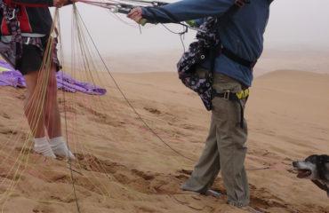 Namib gliding 12