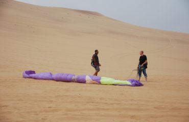 Namib gliding 14