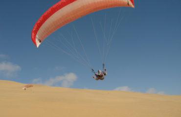 Namib gliding 16