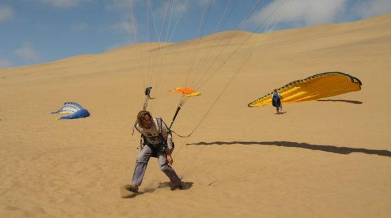 Namib gliding 17