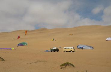 Namib gliding 18
