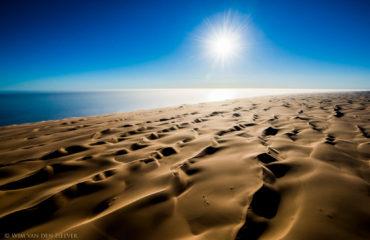 Dune Landscape at Langewand